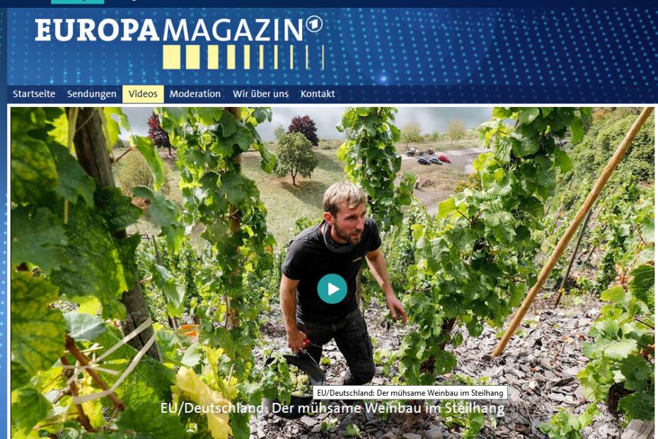 EU/Deutschland: Der mühsame Weinbau im Steilhang